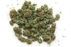 חקירת עבירות סמים