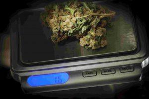 שקילת סמים